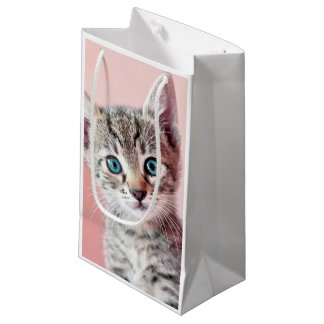 Cute kitten with blue eyes. small gift bag