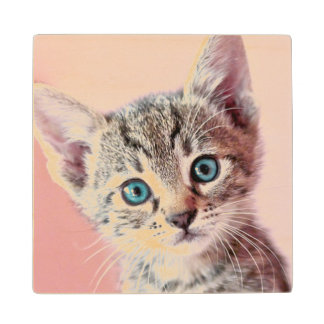 Cute kitten with blue eyes. wood coaster