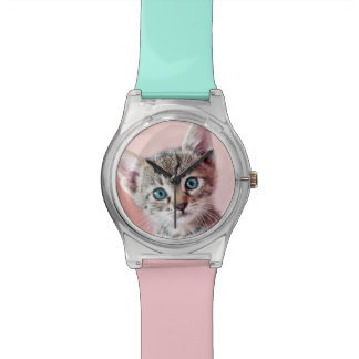 Cute kitten with blue eyes. wrist watch