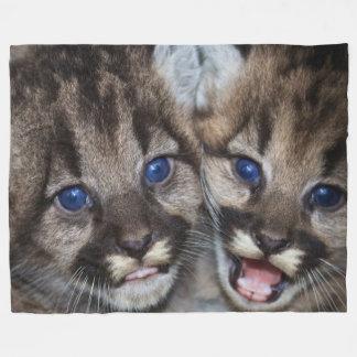 Cute Kittens Fleece Blanket, Large