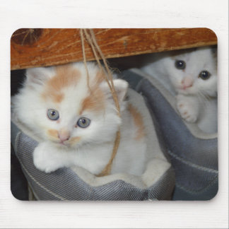 Cute Kittens in boots Mouse Pad