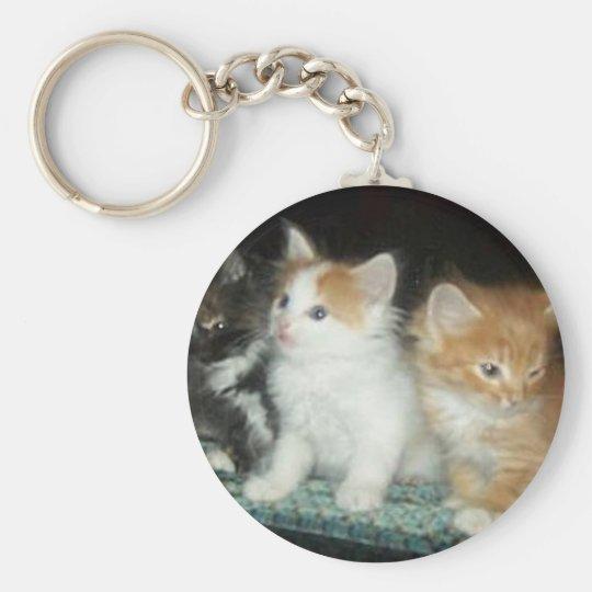 Cute Kittens Keychain