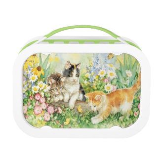 Cute Kittens Lunch Box