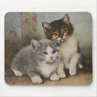 Cute Kittens Mousepad