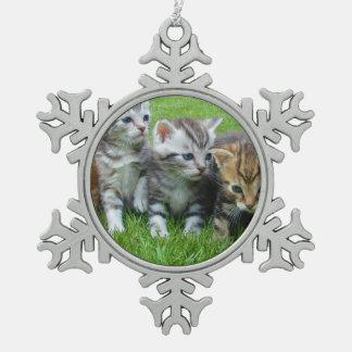 Cute kittens sitting in grass ornaments