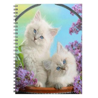 Cute Kittens Spiral Notebook