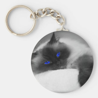 cute kitty basic round button key ring