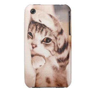 Cute Kitty iPhone 3 Case-Mate Case