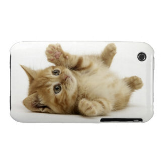 Cute Kitty Case-Mate iPhone 3 Cases