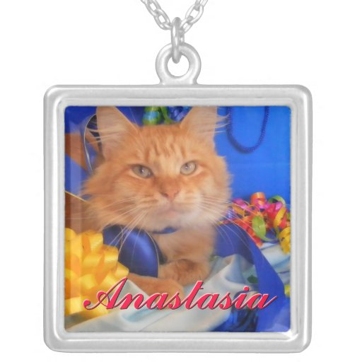 Cute Kitty Cat and Blue Necklace