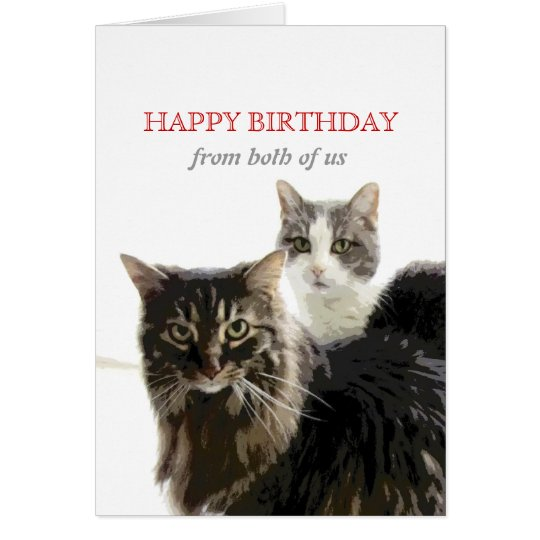 cute kitty cat Birthday Card from both of us