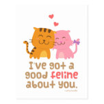 Cute Kitty Cat Feline Love Confession Pun Humour