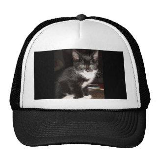 Cute Kitty Mesh Hat