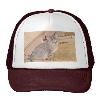 Cute Kitty Trucker Hat