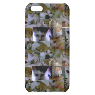 Cute Kitty Mosaic iPhone 5C Case
