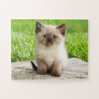 Cute Kitty Puzzle