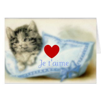 Cute kitty with pillow and love note card