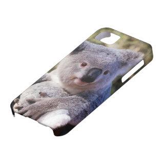 Cute Koala Bear Case-mate 4 Iphone Case iPhone 5 Cases