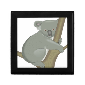 Cute Koala Bear Destiny Nature Aussi Outback Gift Box