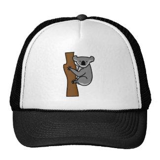 Cute koala bear in a tree cap