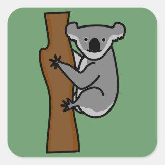 Cute koala bear in a tree square sticker