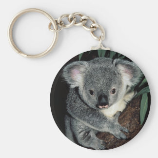Cute Koala Bear Key Ring