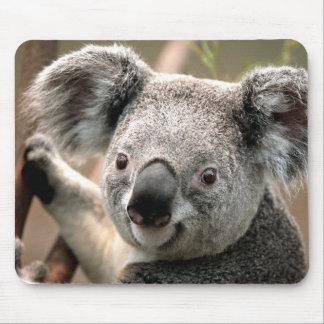 Cute Koala Bear Mouse Mat
