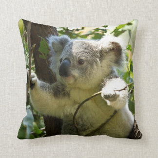 Cute Koala Bear Pillow