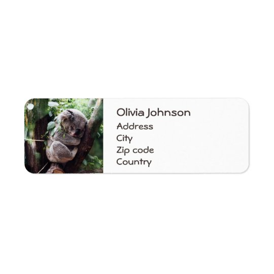 Cute Koala Bear relaxing in a Tree Return Address Label