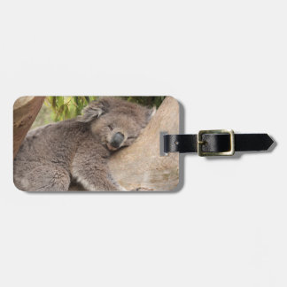 Cute Koala Bear resting on a tree Luggage Tag