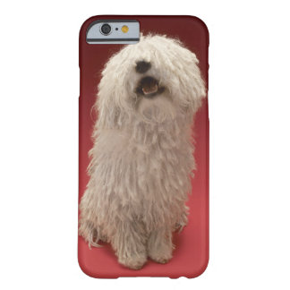 Cute Komondor Dog Barely There iPhone 6 Case