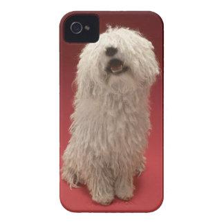Cute Komondor Dog Case-Mate iPhone 4 Case