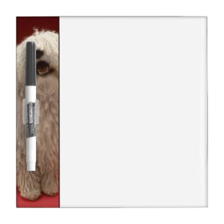 Cute Komondor Dog Dry Erase Board
