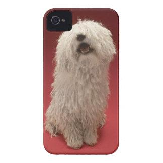 Cute Komondor Dog iPhone 4 Case-Mate Case