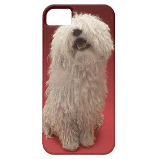 Cute Komondor Dog iPhone 5 Case