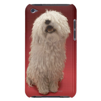 Cute Komondor Dog iPod Touch Case