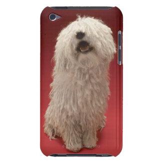 Cute Komondor Dog iPod Touch Cover