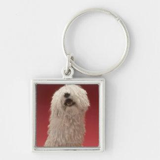 Cute Komondor Dog Silver-Colored Square Key Ring