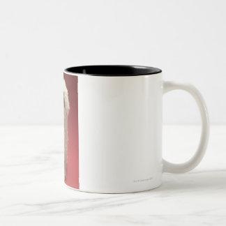 Cute Komondor Dog Two-Tone Coffee Mug