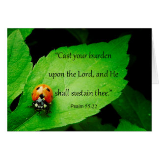 "Cute Ladybug ""God Cares for You"" Scripture Card"