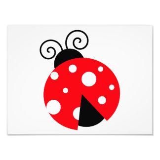 Cute Ladybug Photographic Print