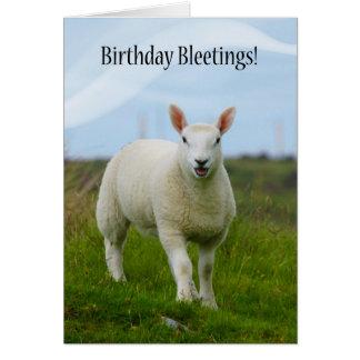 Cute Lamb Birthday Bleetings - Lamb In Field Card