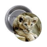 Cute Lion Cub Button