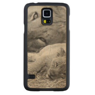 Cute Lion Cub Resting With Father Carved Maple Galaxy S5 Case
