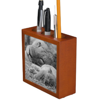 Cute Lion Cub Resting With Father Desk Organiser