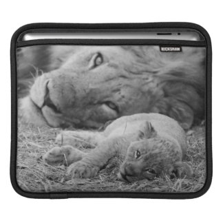 Cute Lion Cub Resting With Father iPad Sleeve