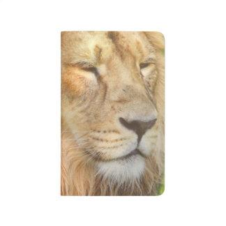 Cute Lions Journal