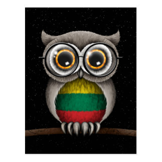 Cute Lithuanian Flag Owl Wearing Glasses Postcard
