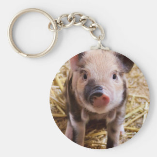 Cute little Baby Piglet Basic Round Button Key Ring