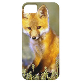 cute little baby red fox barely there iPhone 5 case
